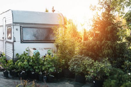 empty garden with trailer and plants