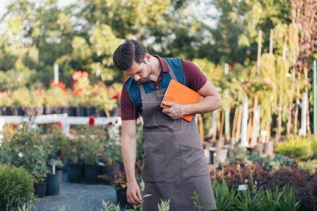 gardener with digital tablet in garden
