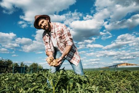 Photo for Handsome bearded farmer in hat holding harvest of organic potatoes - Royalty Free Image