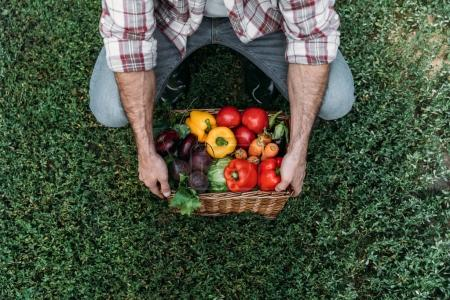 Photo for Cropped shot of farmer holding basket with fresh organic vegetables - Royalty Free Image
