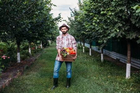 farmer holding basket with vegetables