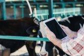 """Постер, картина, фотообои """"Фермер с помощью цифрового планшета"""""""