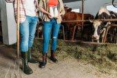"""Постер, картина, фотообои """"фермеры с свежего молока в коровнике"""""""