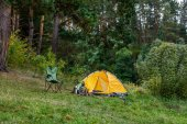 camping with tent in forest