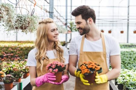 Gardeners wearing protective gloves and holding blooming flowers in pots