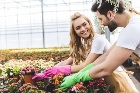 Young male and female gardeners arranging pots with flowers