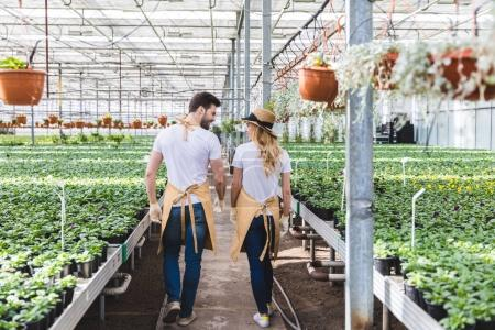 Man and woman gardeners walking among flowers in greenhouse