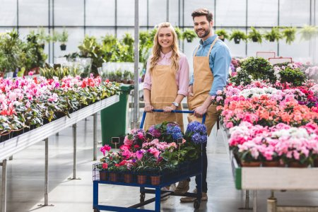 Young gardeners standing by cart with flowers in greenhouse
