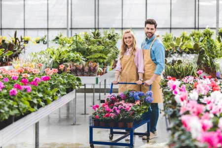 Smiling gardeners holding cart with flowers in glasshouse