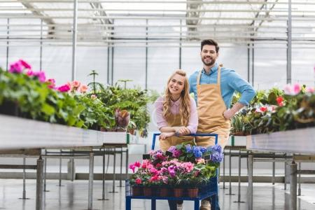 Young owners of greenhouse standing by cart with flowers in glasshouse