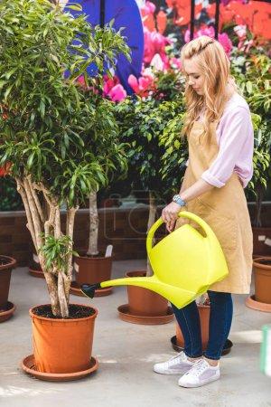 Female gardener watering green plants in glasshouse