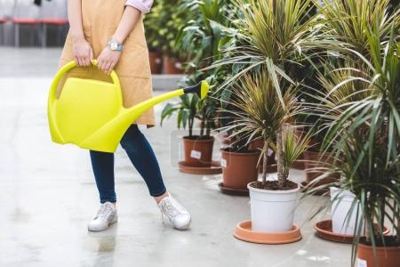Close-up view of gardener with watering can standing by plants in greenhouse