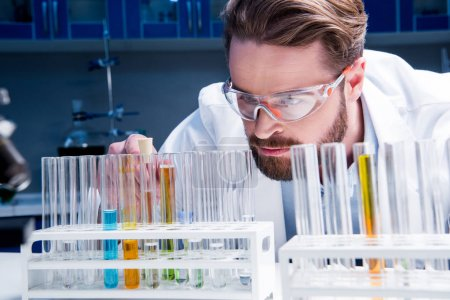 Photo for Concentrated bearded chemist in goggles with reagents in tubes in laboratory - Royalty Free Image