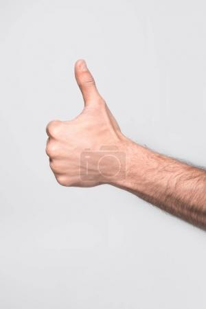 Photo for Cropped view of man showing thumb up, isolated on grey - Royalty Free Image