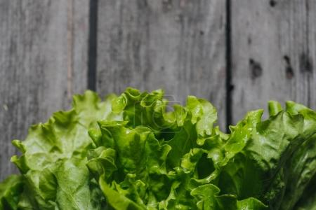 Close up of green salad lettuce leaves on grey woo...