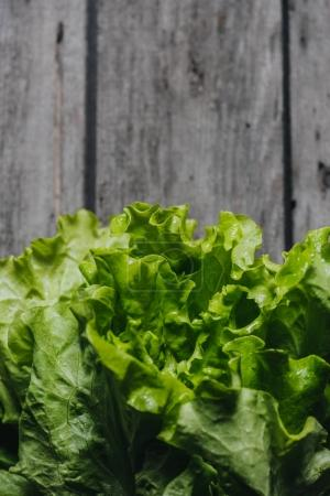 Photo for Close up of green salad lettuce leaves on grey wooden table, wooden background - Royalty Free Image
