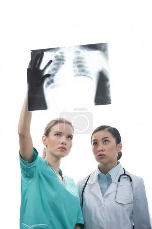 doctors looking at x-ray picture together