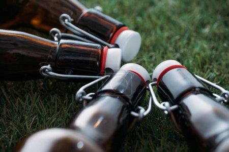Beer bottles lying on grass