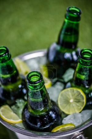 Photo for Closeup view of bucket full of ice cubes with opened beer bottles and lemon slices on green grass - Royalty Free Image