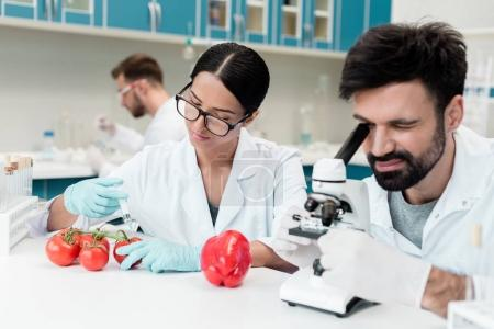 Photo for Young scientists with syringe and microscope working with tomatoes in chemical lab - Royalty Free Image