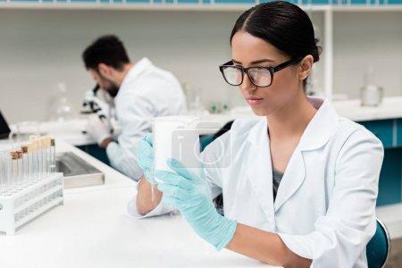 Photo pour Jeune scientifique concentré en lunettes travaillant en laboratoire chimique - image libre de droit