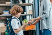 mother giving school lunch to son
