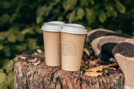 Paper cups in stump