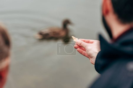 Man feeding duck