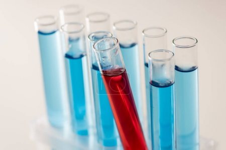 Photo for Closeup shot with row of long test tubes with red and blue liquid - Royalty Free Image