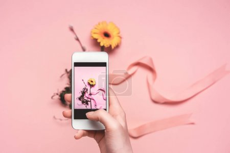 Photo for Cropped view of person taking photo of flower with ribbon on smartphone. springtime concept - Royalty Free Image
