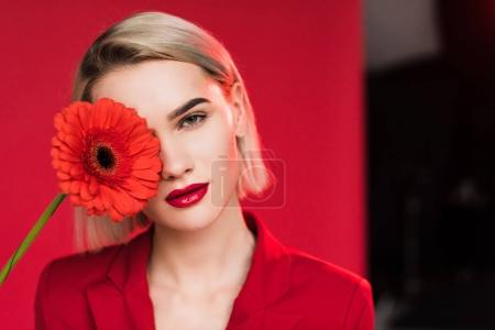 Photo for Portrait of beautiful stylish girl with red gerbera flower, on red - Royalty Free Image
