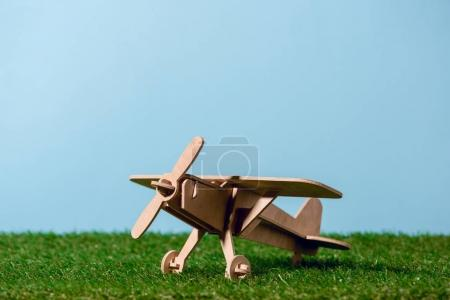 close-up view of small wooden toy plane on green grass