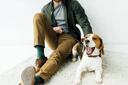 cropped image of man sitting with yawning dog on carpet