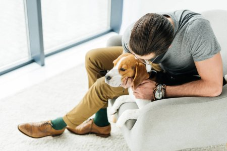 high angle view of man palming cute beagle on armchair