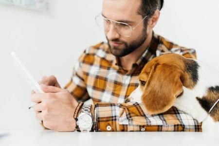 handsome businessman and dog looking at tablet
