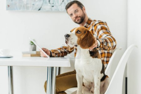 businessman with tablet palming dog in office