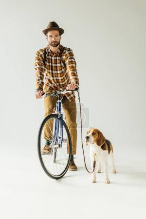 handsome man on bike with beagle looking at camera on white