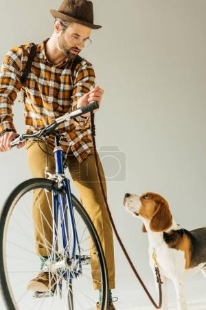 handsome bicycler with beagle with leash on white