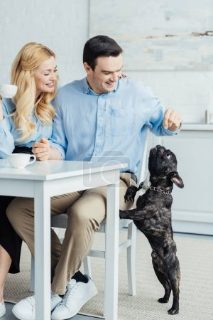 Couple drinking coffee and playing with french bulldog by kitchen table