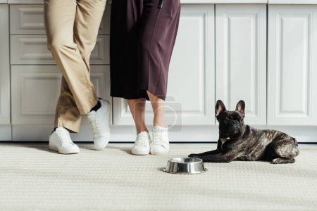 Photo for French bulldog puppy sitting on floor by owners - Royalty Free Image