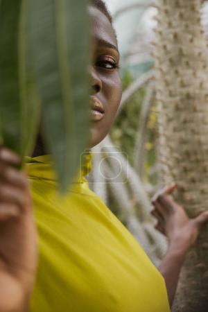selective focus of elegant african american girl posing behind tropical leaves