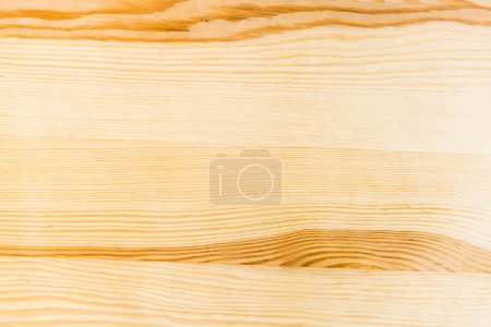 Wooden fence planks light background