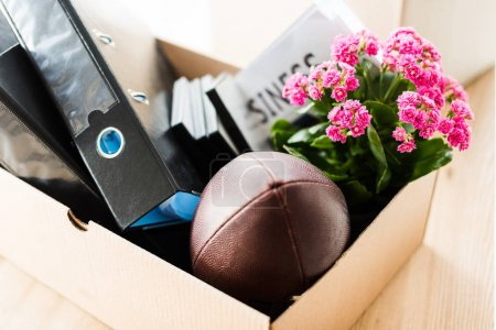 Box with folders and rugby ball by flower in pot