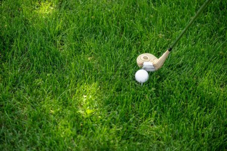 close up view of golf club and ball on green grass