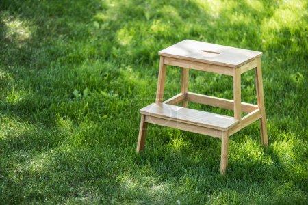 Photo pour Bouchent la vue des commandes d'escaliers en bois sur l'herbe verte - image libre de droit