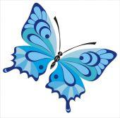 blue beautiful butterfly