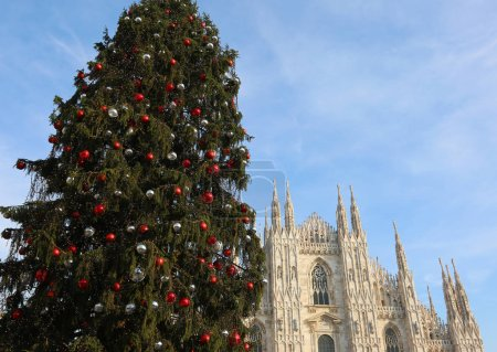 Christmas tree with balls r and the facade of the fantastic Cath