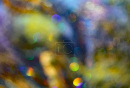 consciously blurred background for surreal and dreamy effect wit