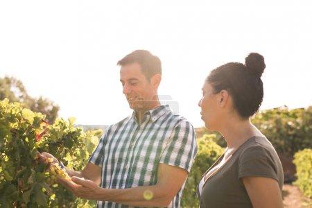 Photo pour Un jeune homme et une femme regardant de vignes portant des vêtements de sport avec un ciel blanc en arrière-plan sur une journée ensoleillée - image libre de droit