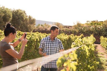 Photo pour Femme aux cheveux brune prend une photo d'un homme dans une chemise bleue et blanche à carreaux dehors dans les vignobles sur une journée ensoleillée - image libre de droit
